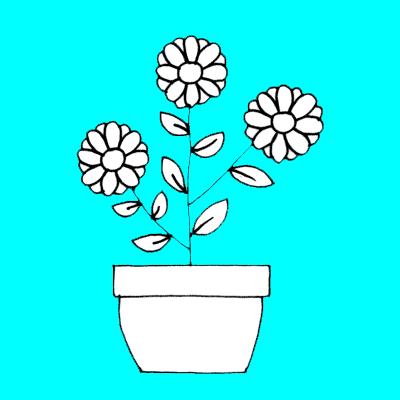 bw-plant-cyan